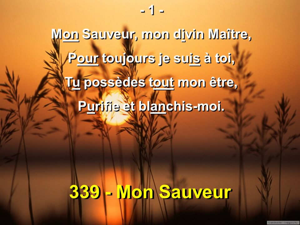 339 - Mon Sauveur - 1 - Mon Sauveur, mon divin Maître,