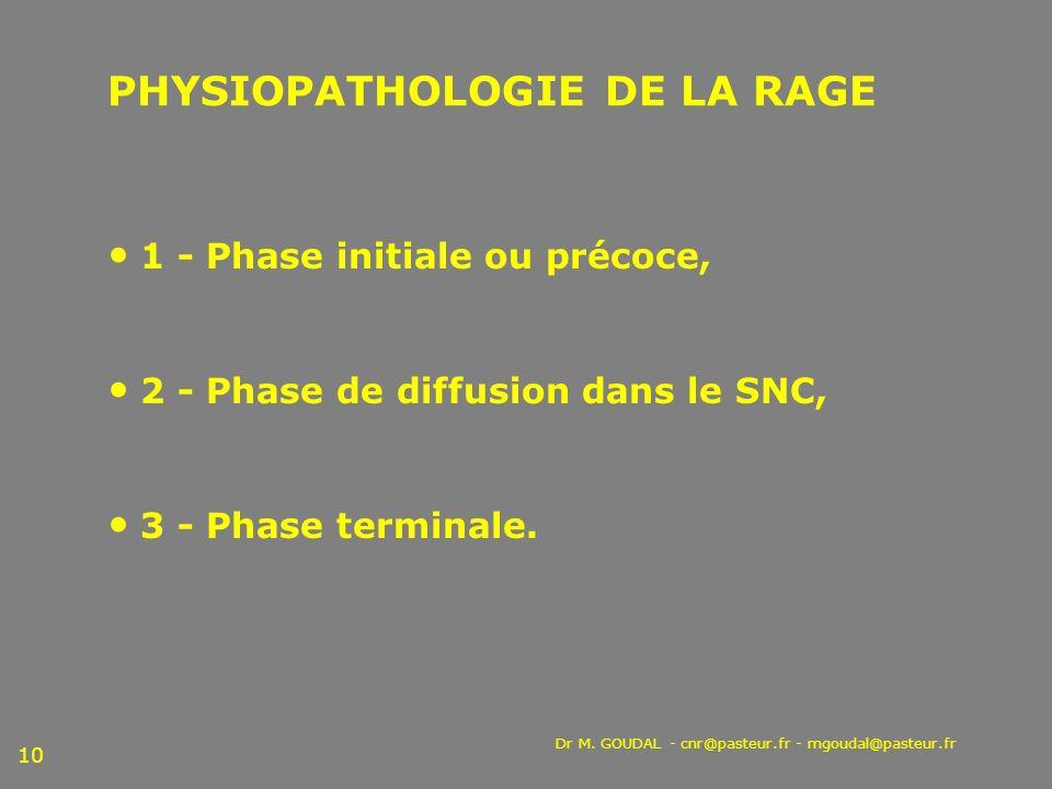PHYSIOPATHOLOGIE DE LA RAGE