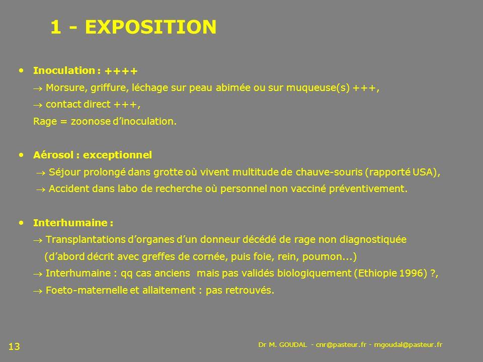 1 - EXPOSITION Inoculation : ++++