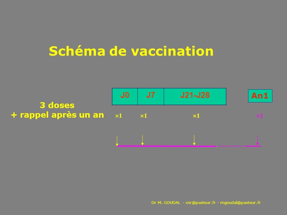 Schéma de vaccination J0 J7 J21-J28 An1 3 doses + rappel après un an
