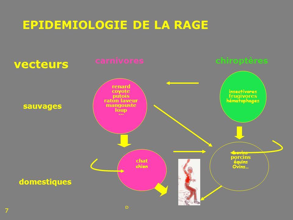 EPIDEMIOLOGIE DE LA RAGE