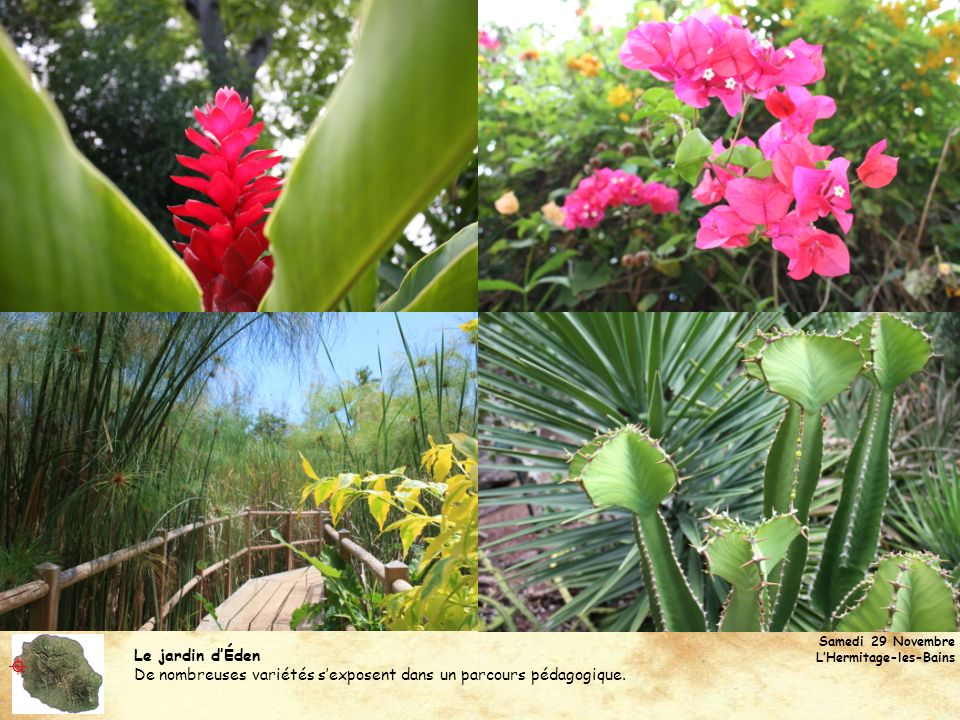 Samedi 29 Novembre L'Hermitage-les-Bains. Le jardin d'Éden. De nombreuses variétés s'exposent dans un parcours pédagogique.