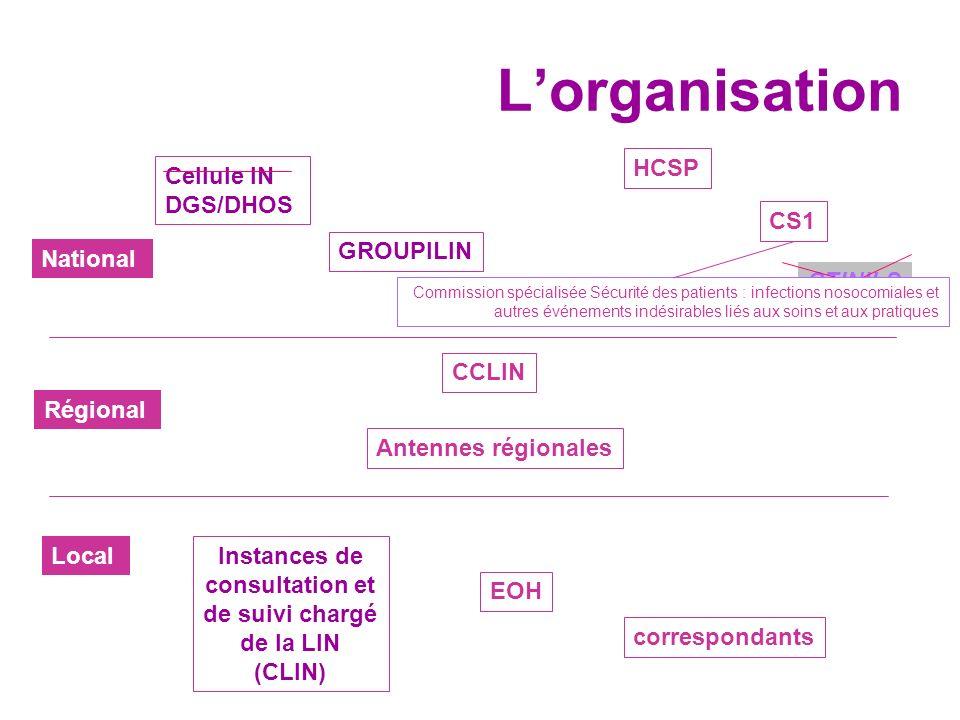 Instances de consultation et de suivi chargé de la LIN (CLIN)