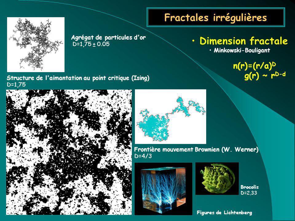 Fractales irrégulières