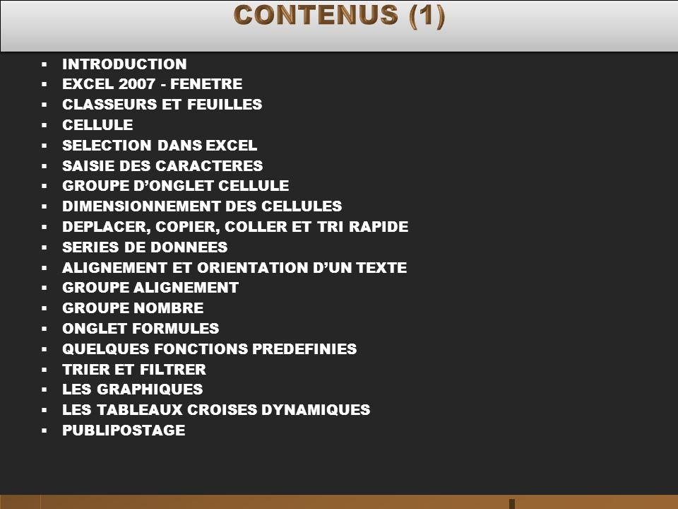 CONTENUS (1) INTRODUCTION EXCEL 2007 - FENETRE CLASSEURS ET FEUILLES