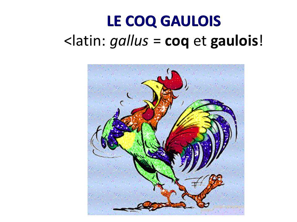 LE COQ GAULOIS <latin: gallus = coq et gaulois!
