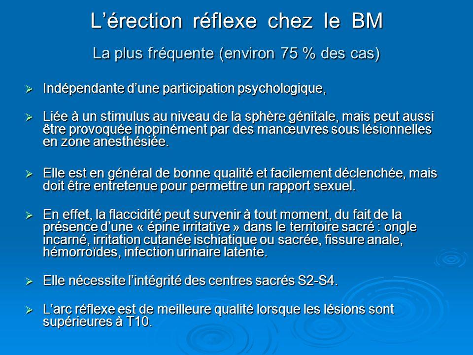 L'érection réflexe chez le BM La plus fréquente (environ 75 % des cas)