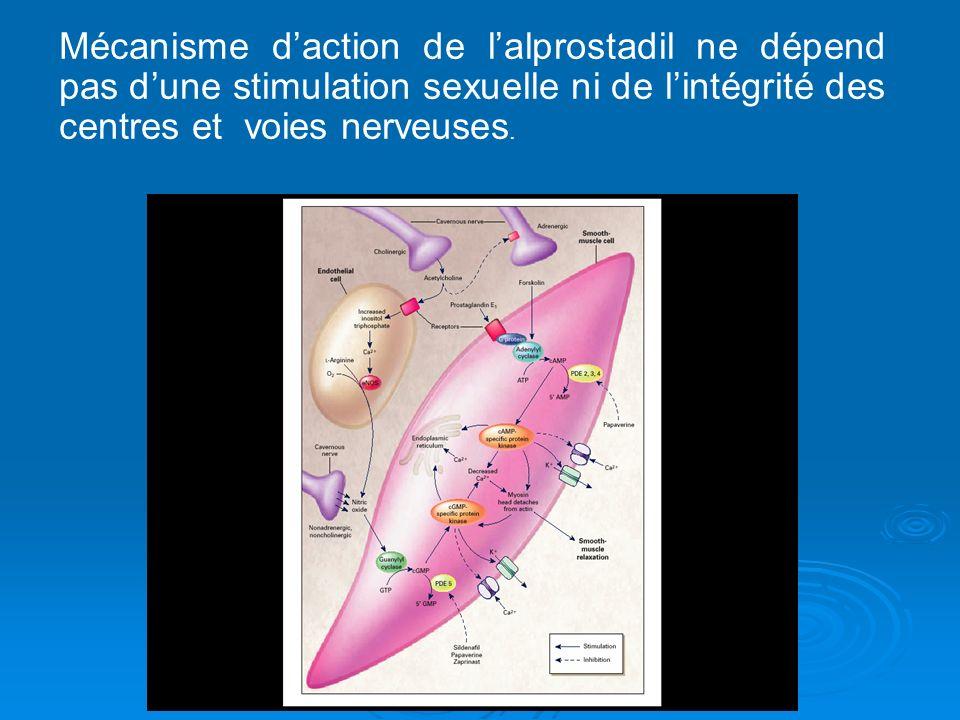 Mécanisme d'action de l'alprostadil ne dépend pas d'une stimulation sexuelle ni de l'intégrité des centres et voies nerveuses.