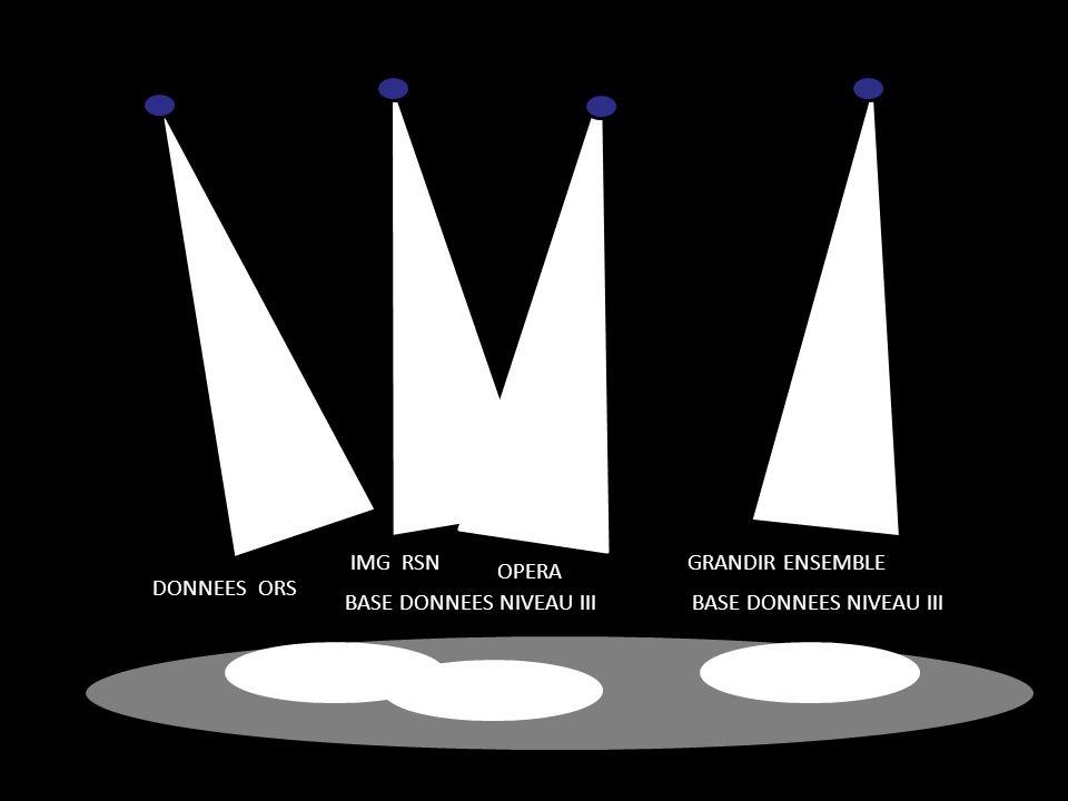 IMG RSN GRANDIR ENSEMBLE OPERA DONNEES ORS BASE DONNEES NIVEAU III BASE DONNEES NIVEAU III