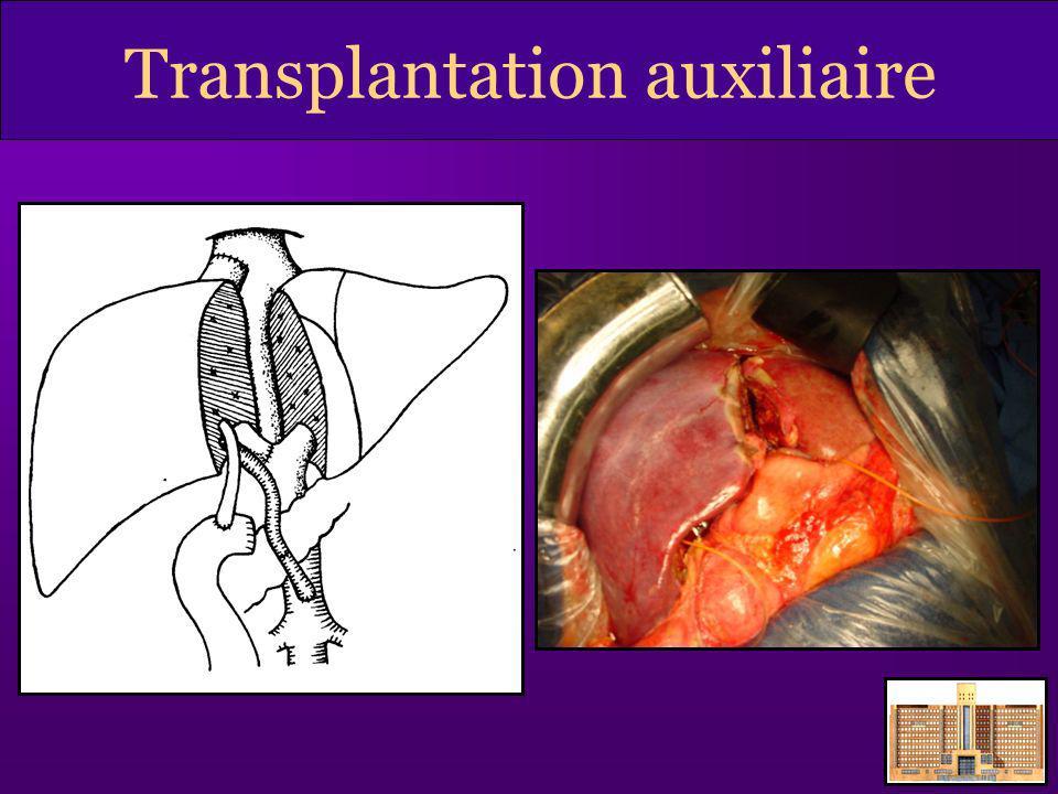 Transplantation auxiliaire