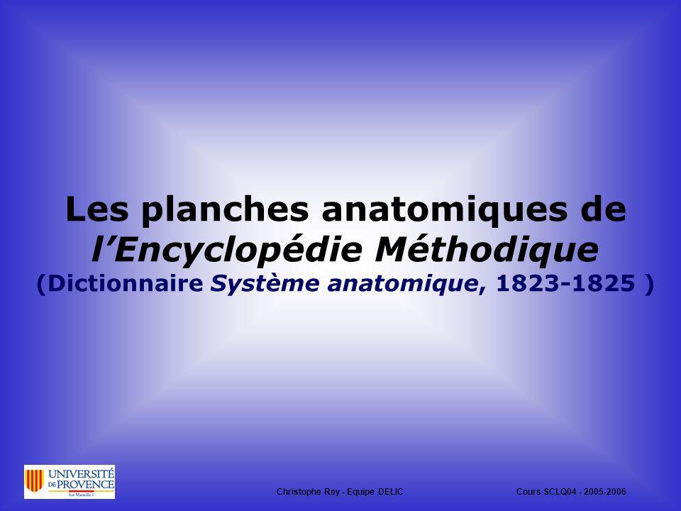 Les planches anatomiques de l'Encyclopédie Méthodique