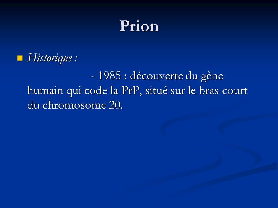 Prion Historique : - 1985 : découverte du gène humain qui code la PrP, situé sur le bras court du chromosome 20.