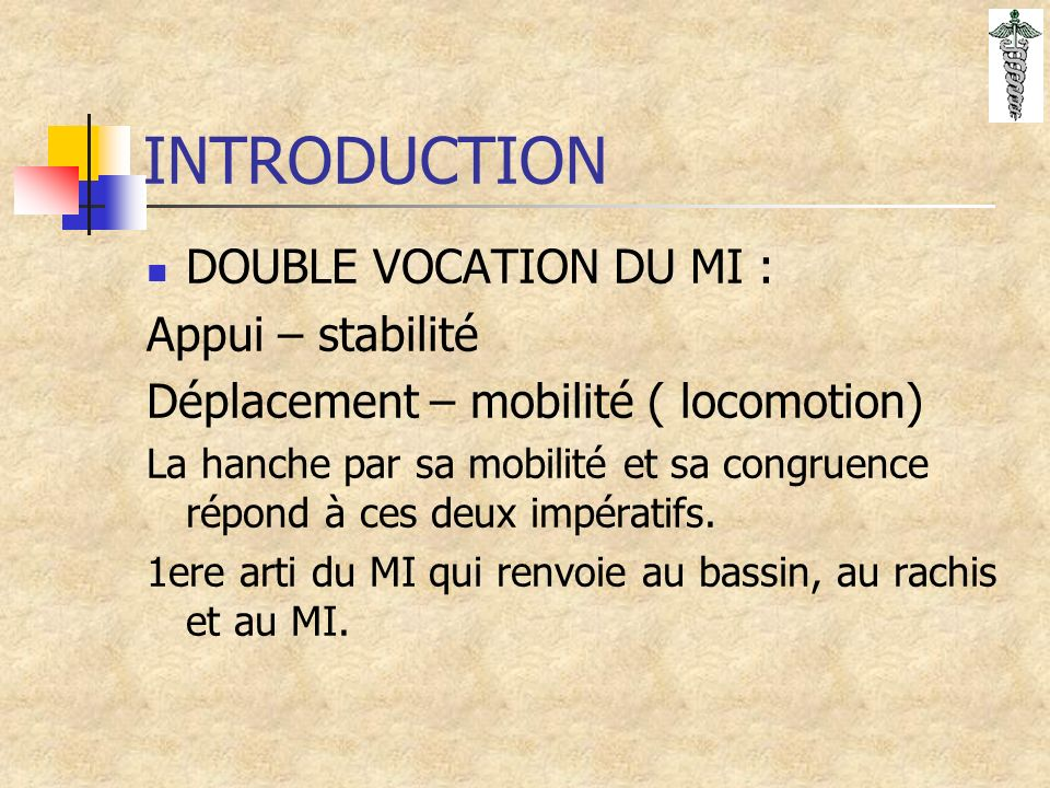 INTRODUCTION DOUBLE VOCATION DU MI : Appui – stabilité