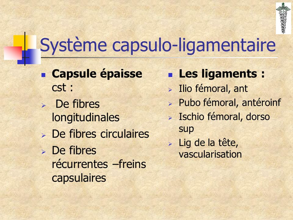 Système capsulo-ligamentaire