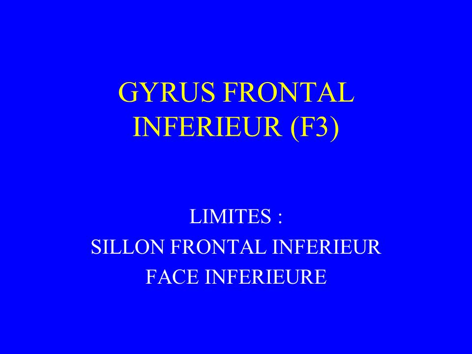GYRUS FRONTAL INFERIEUR (F3)