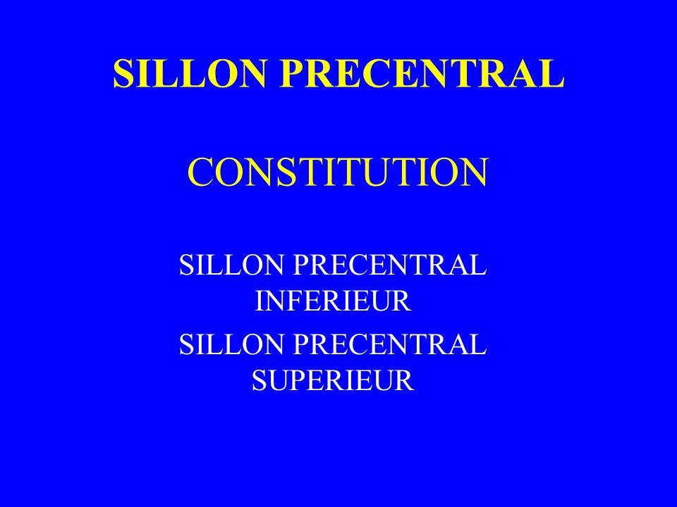 SILLON PRECENTRAL CONSTITUTION