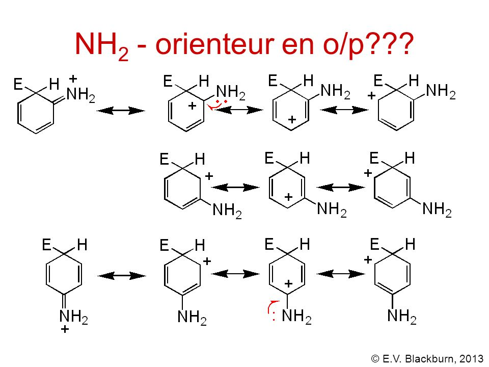 NH2 - orienteur en o/p