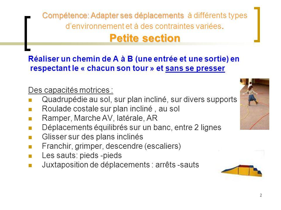 Compétence: Adapter ses déplacements à différents types d'environnement et à des contraintes variées. Petite section