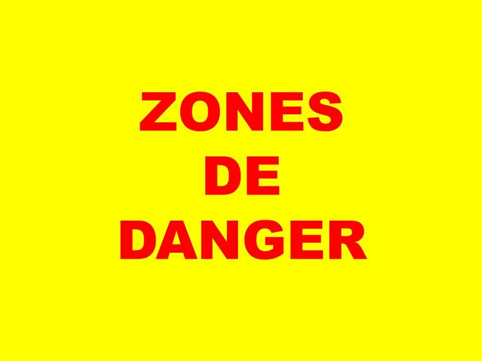 ZONES DE DANGER SUJETS DE DISCUSSION : QUELLES SONT LES ZONES DE DANGER AUTOUR DE L'AUTOBUS SCOLAIRE