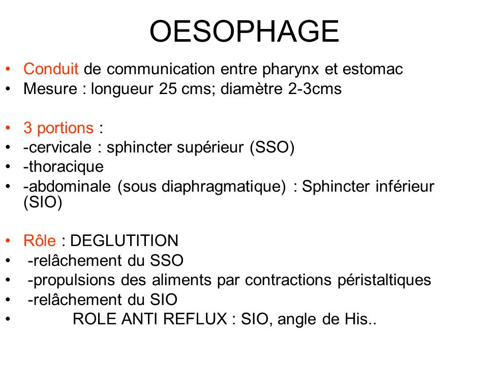 OESOPHAGE Conduit de communication entre pharynx et estomac