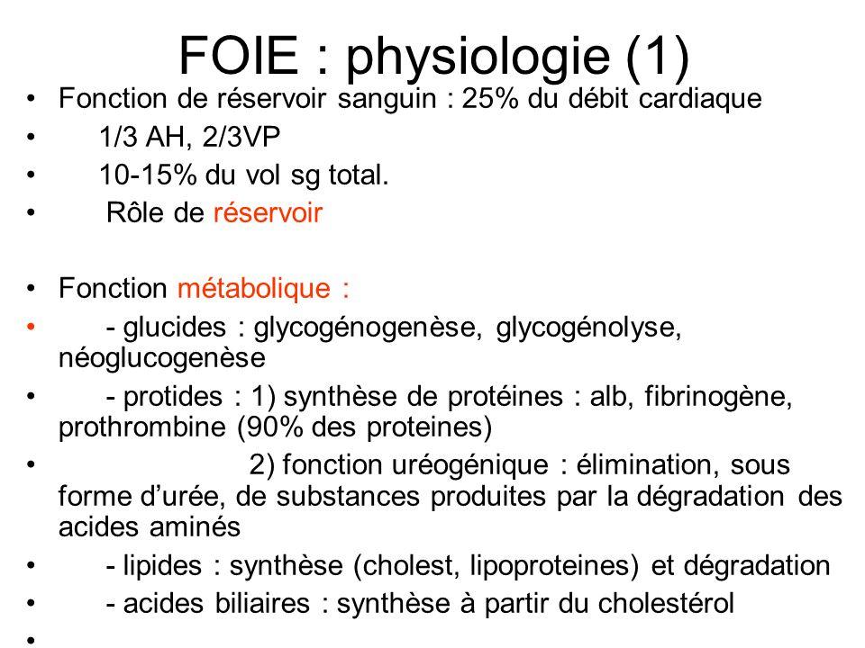 FOIE : physiologie (1) Fonction de réservoir sanguin : 25% du débit cardiaque. 1/3 AH, 2/3VP. 10-15% du vol sg total.