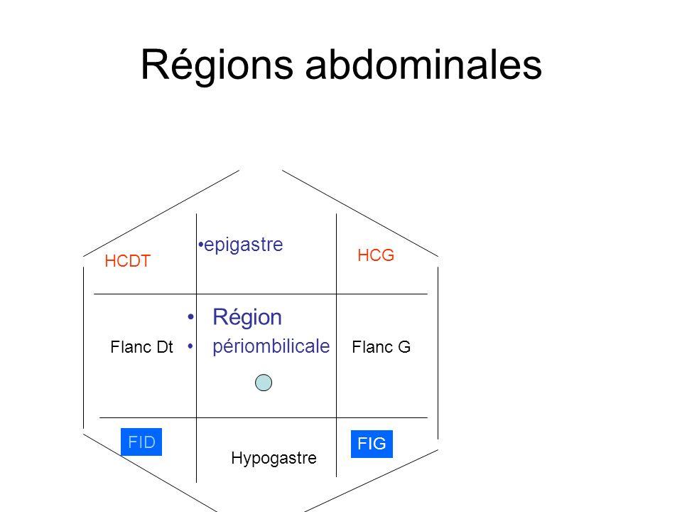 Régions abdominales Région epigastre périombilicale HCG HCDT Flanc Dt