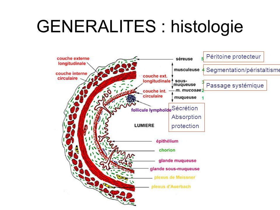 GENERALITES : histologie