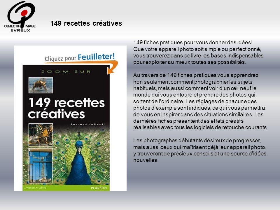 149 recettes créatives 149 fiches pratiques pour vous donner des idées!