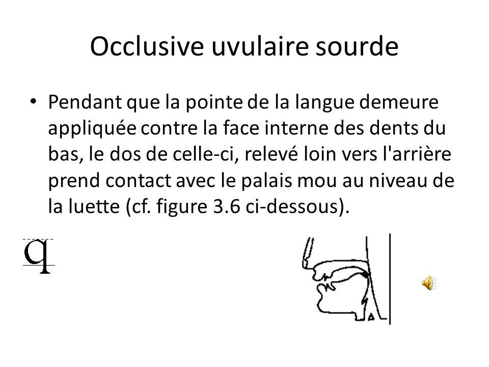 Occlusive uvulaire sourde