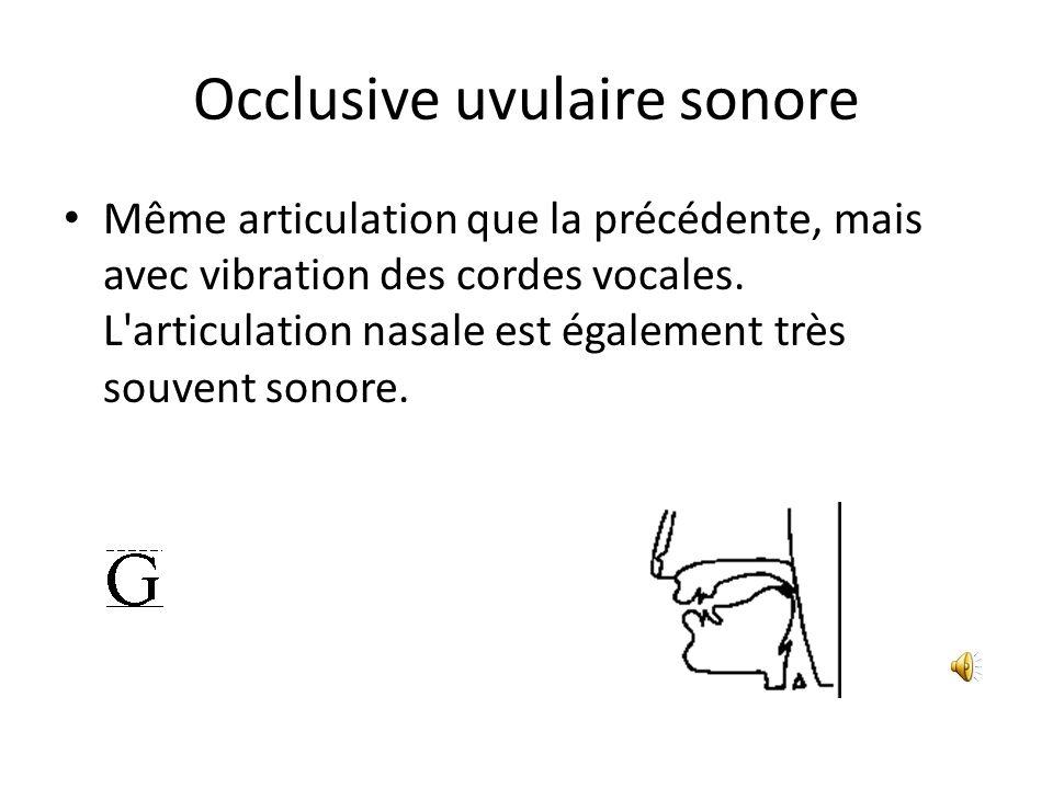 Occlusive uvulaire sonore