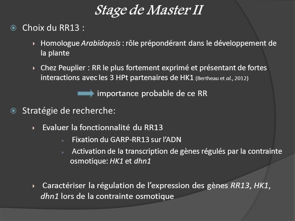 Stage de Master II Choix du RR13 : Stratégie de recherche: