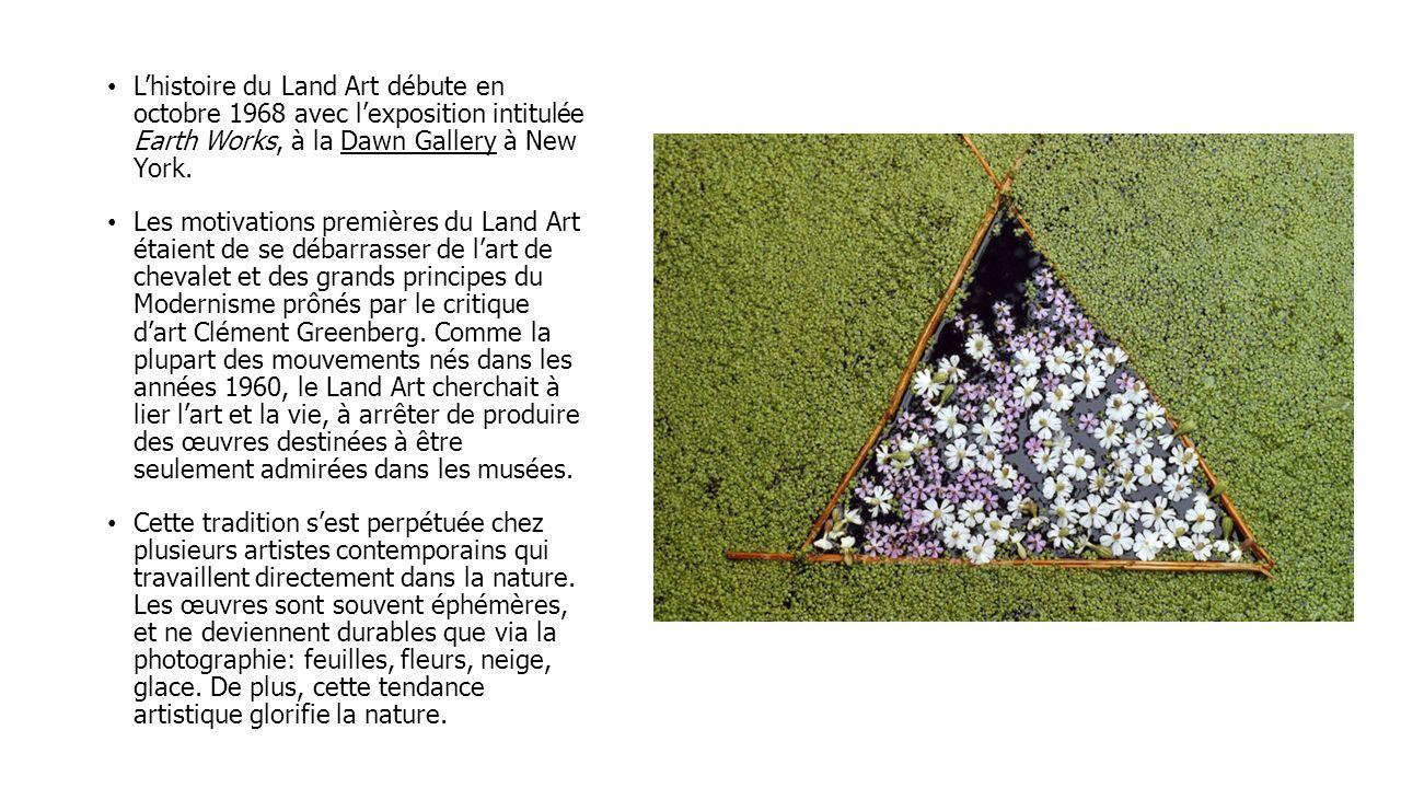L'histoire du Land Art débute en octobre 1968 avec l'exposition intitulée Earth Works, à la Dawn Gallery à New York.