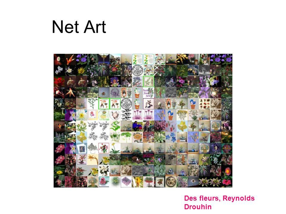 Net Art Des fleurs, Reynolds Drouhin