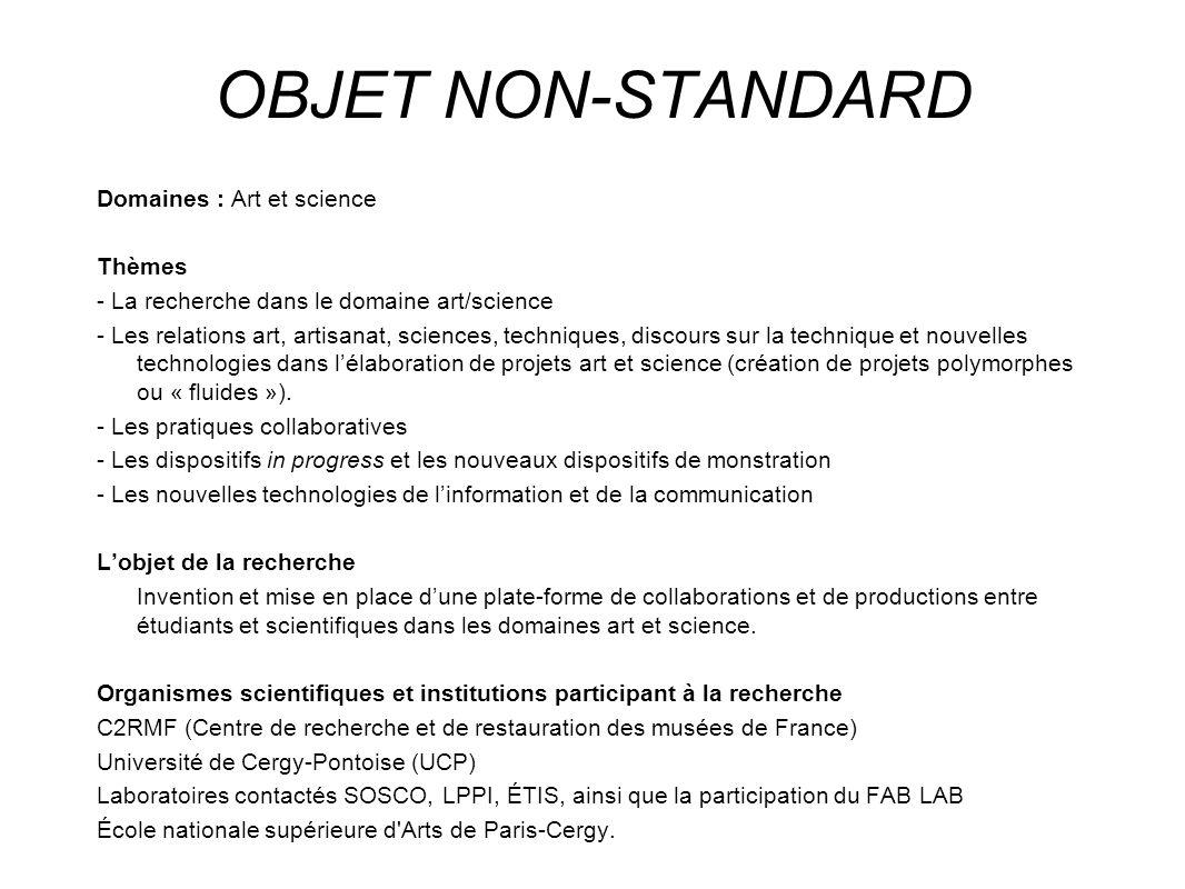 OBJET NON-STANDARD Domaines : Art et science Thèmes