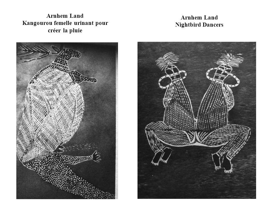 Arnhem Land Kangourou femelle urinant pour créer la pluie