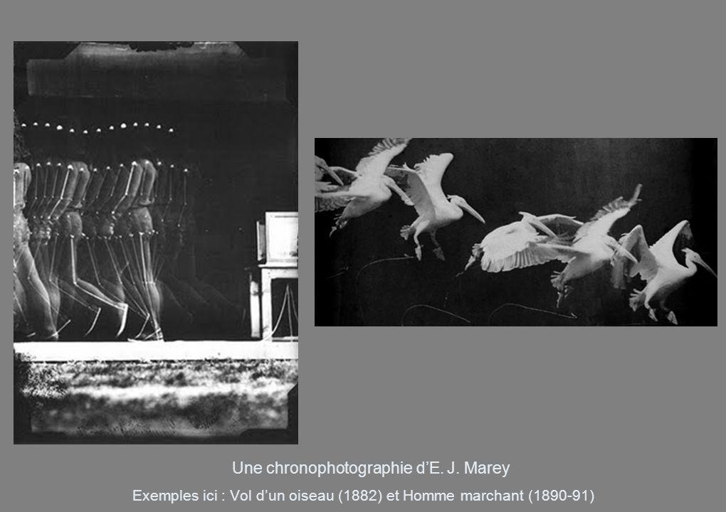 Exemples ici : Vol d'un oiseau (1882) et Homme marchant (1890-91)