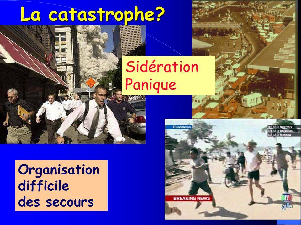 La catastrophe Sidération Panique Organisation difficile des secours