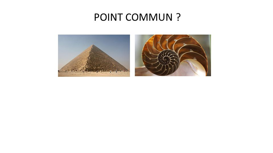 POINT COMMUN