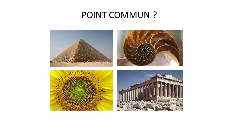 POINT COMMUN La pyramide de Kheops, une coquille de nautile, une fleur de tournesol et le Parthénon.