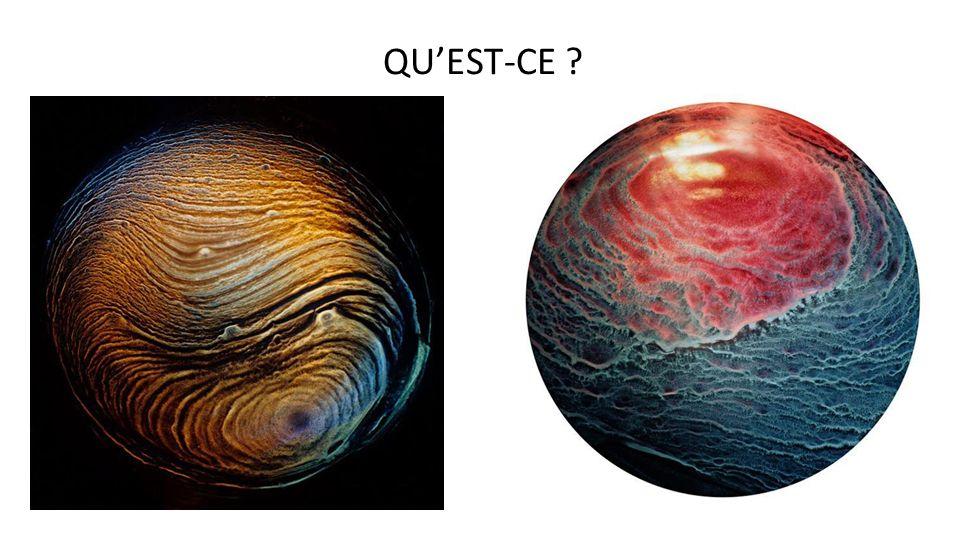 QU'EST-CE Projet d'origine :