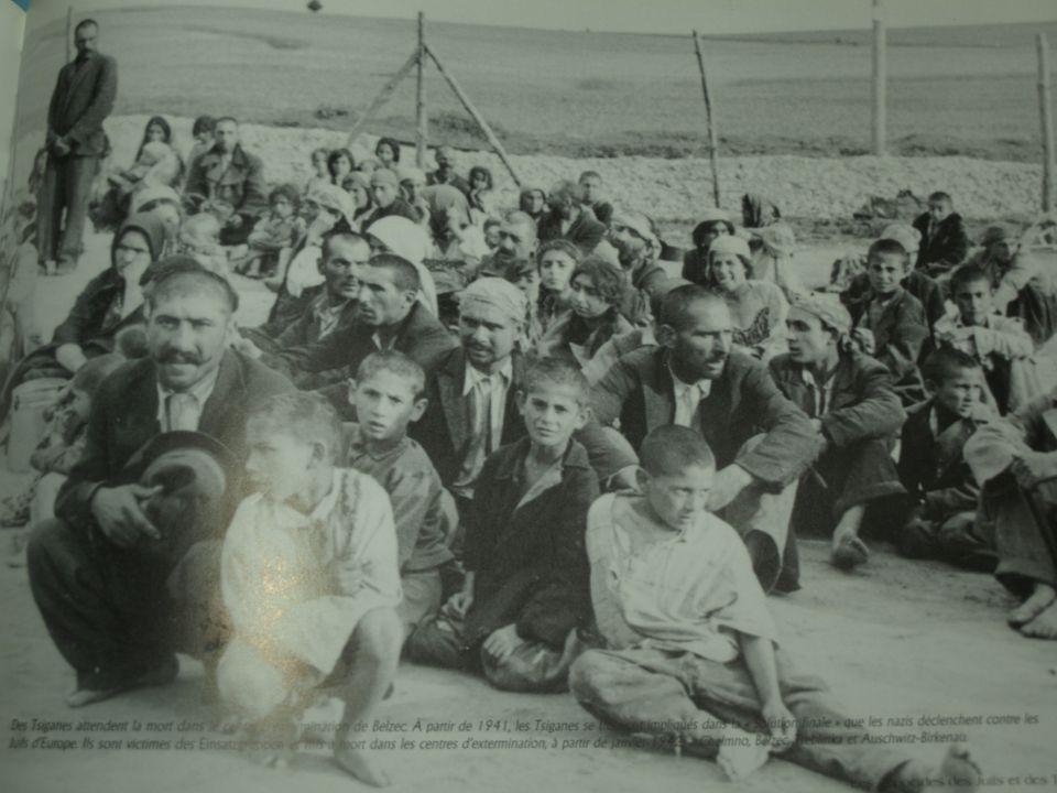 L'autre génocide :celui des Tsiganes