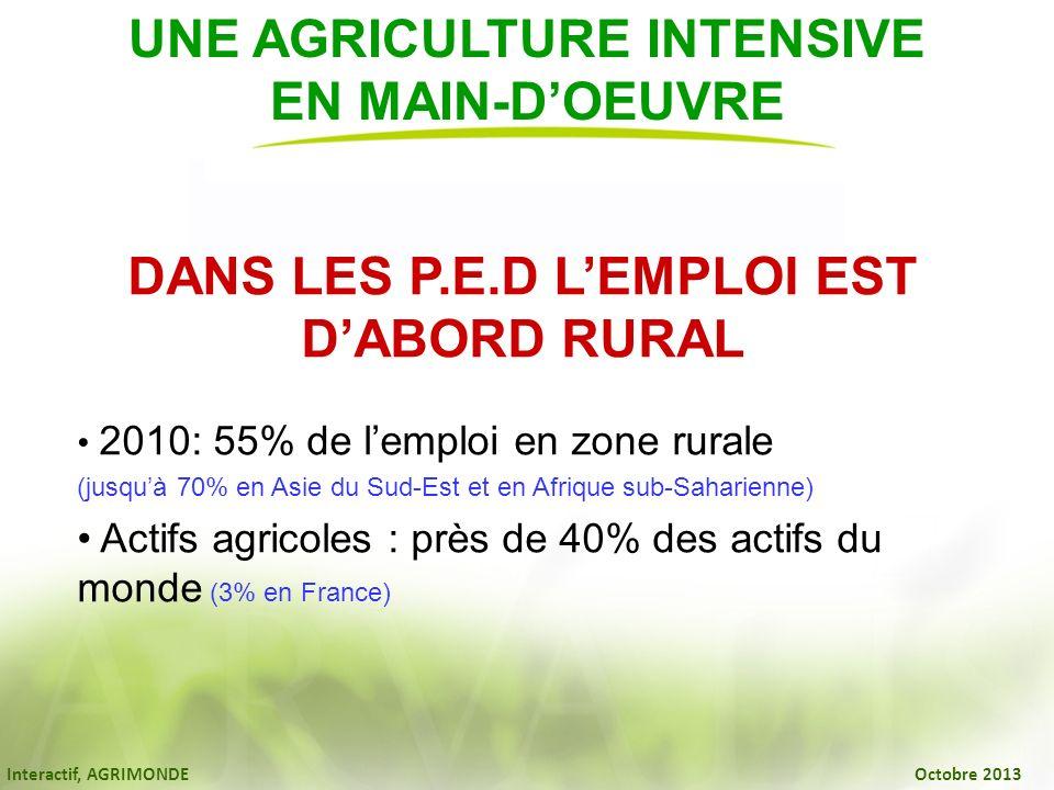 UNE AGRICULTURE INTENSIVE DANS LES P.E.D L'EMPLOI EST D'ABORD RURAL