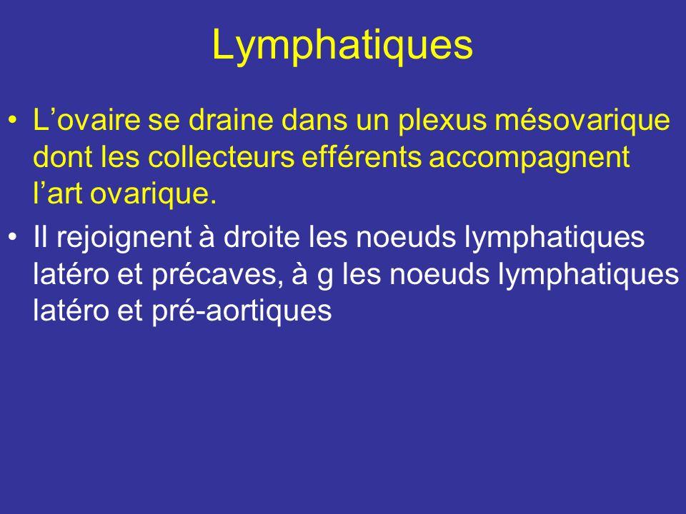 Lymphatiques L'ovaire se draine dans un plexus mésovarique dont les collecteurs efférents accompagnent l'art ovarique.