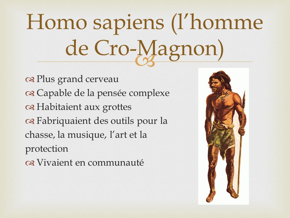 Homo sapiens (l'homme de Cro-Magnon)