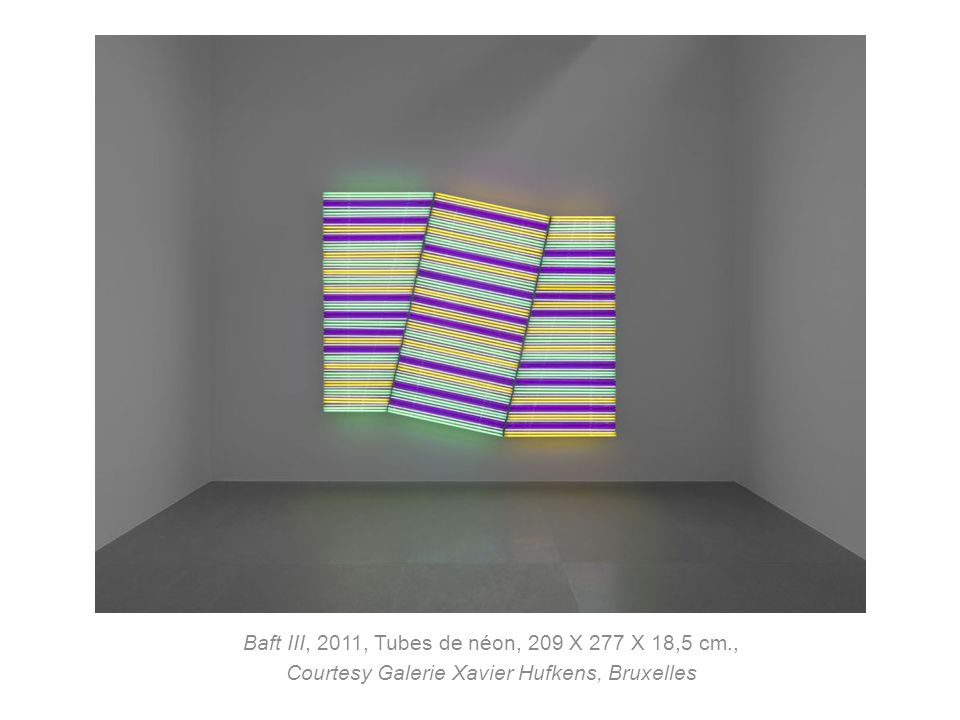 Baft III, 2011, Tubes de néon, 209 X 277 X 18,5 cm.,