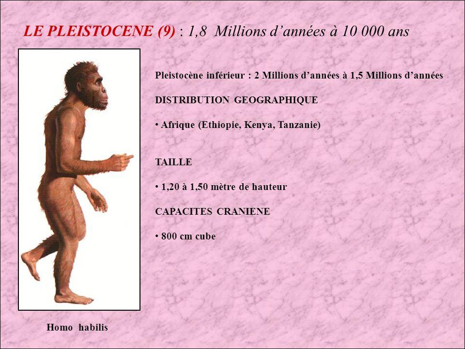 LE PLEISTOCENE (9) : 1,8 Millions d'années à 10 000 ans
