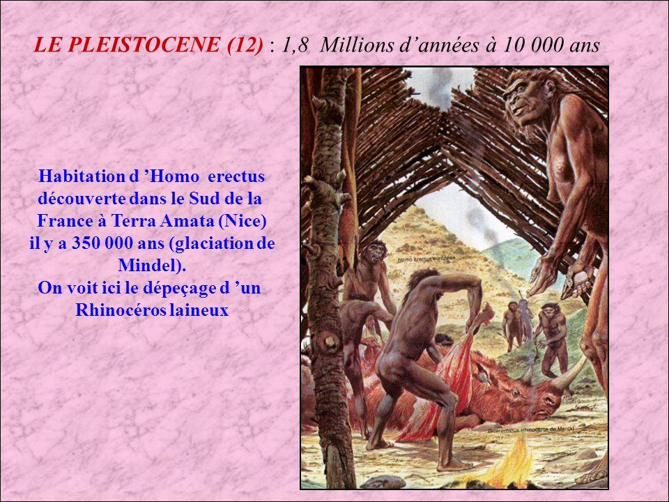 LE PLEISTOCENE (12) : 1,8 Millions d'années à 10 000 ans