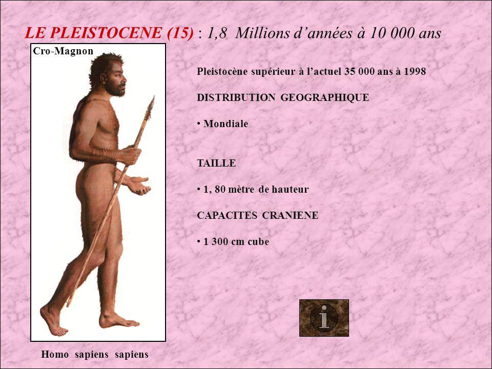 LE PLEISTOCENE (15) : 1,8 Millions d'années à 10 000 ans