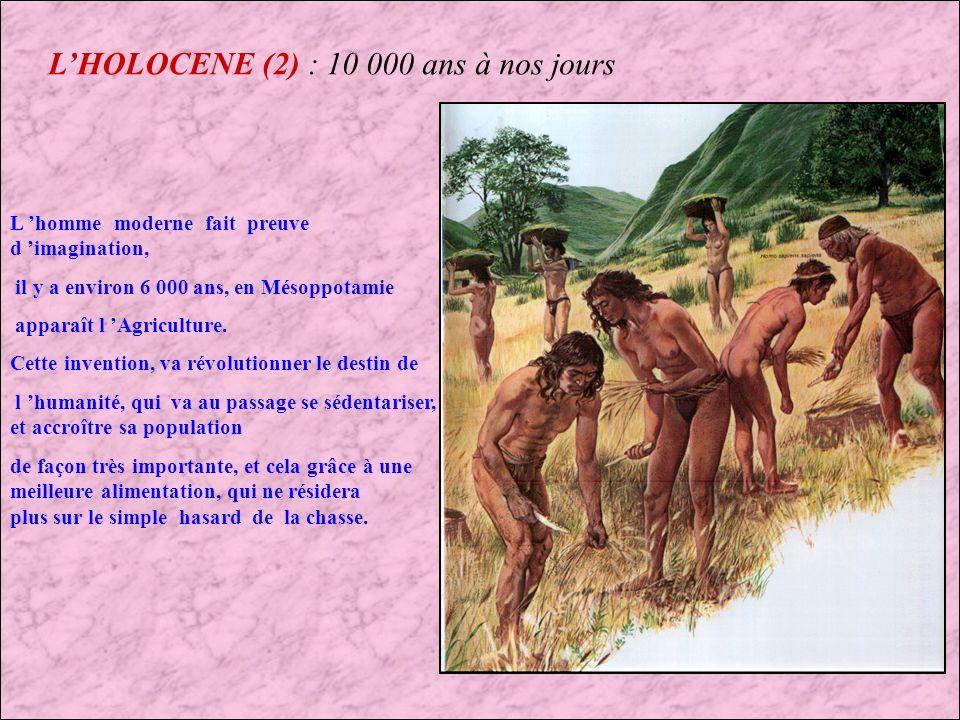 L'HOLOCENE (2) : 10 000 ans à nos jours