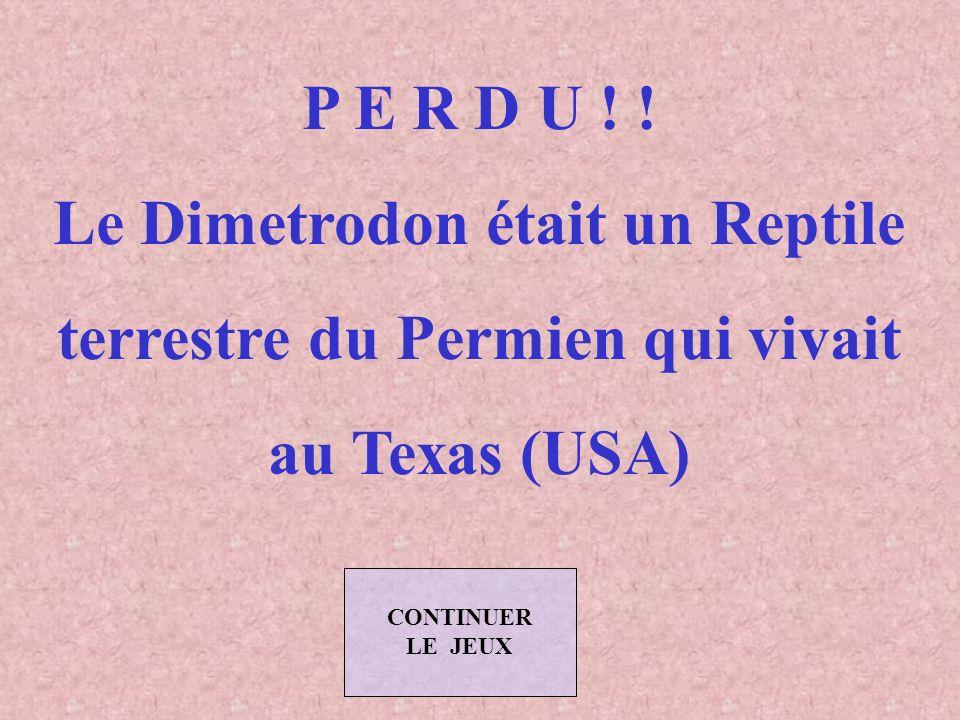 Le Dimetrodon était un Reptile terrestre du Permien qui vivait